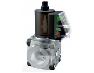 Dungs gas valve - 11